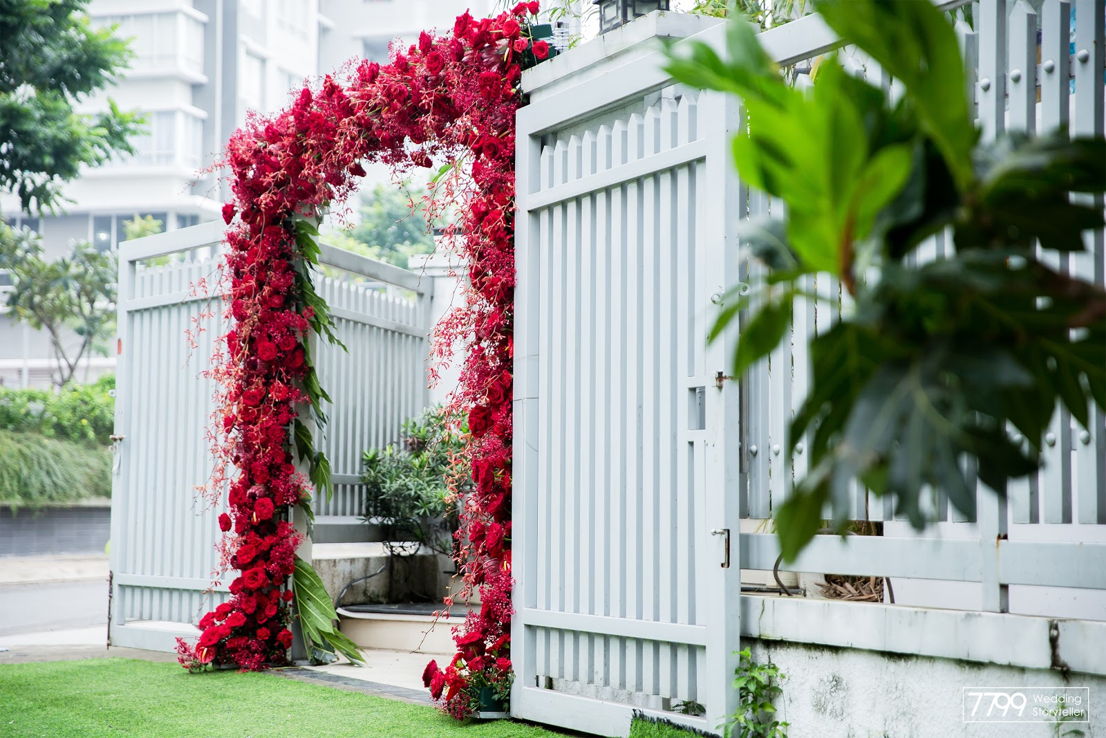 Cổng hoa màu đỏ Pure Red
