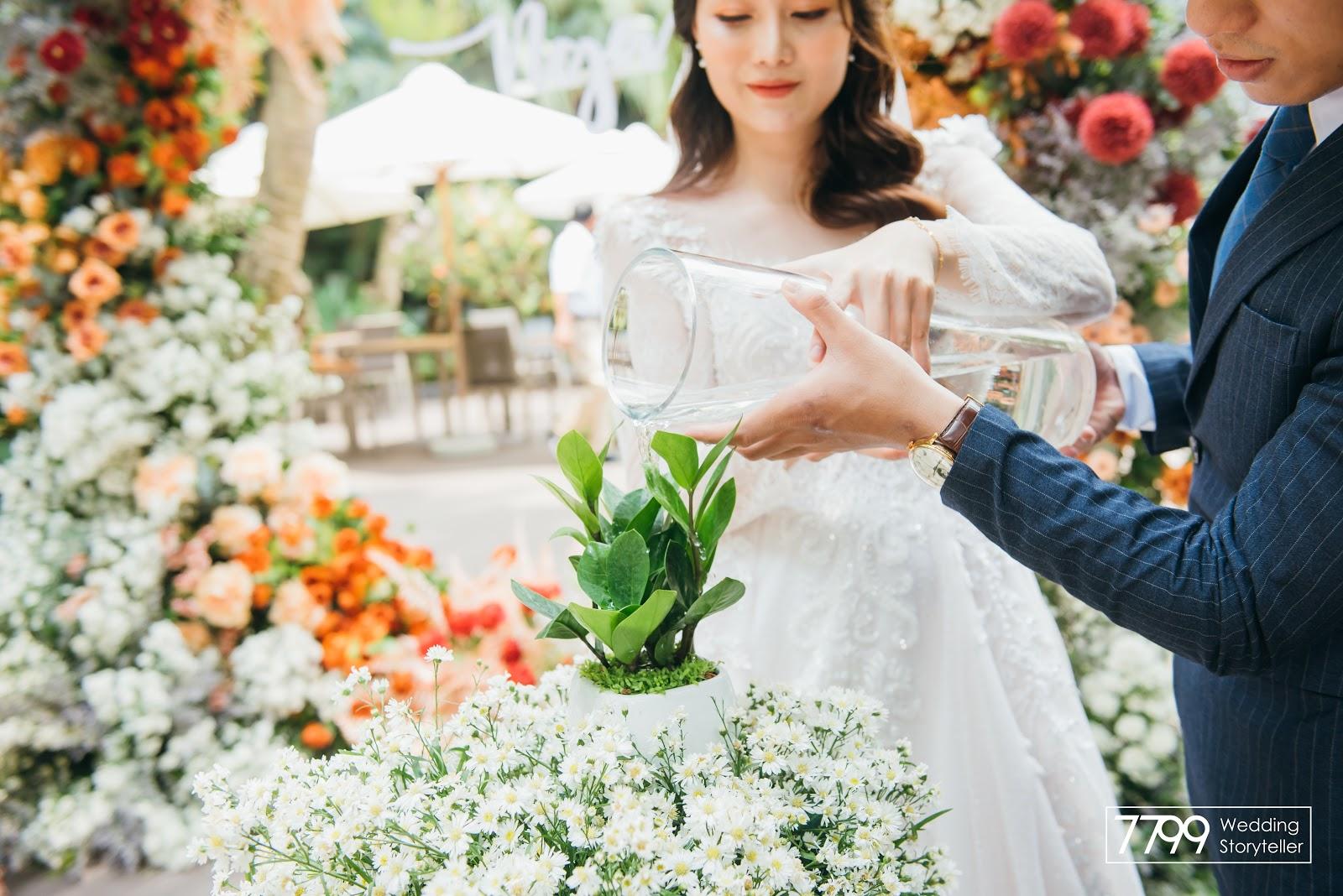 Đám cưới Việt Nam nghi thức ươm trồng