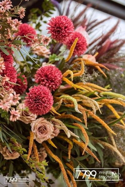 Đỏ Burgundy - Tông màu của mùa đông